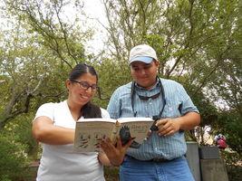 Learn how to identify birds