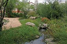 The A. E. Leonard Family Native Plant Garden