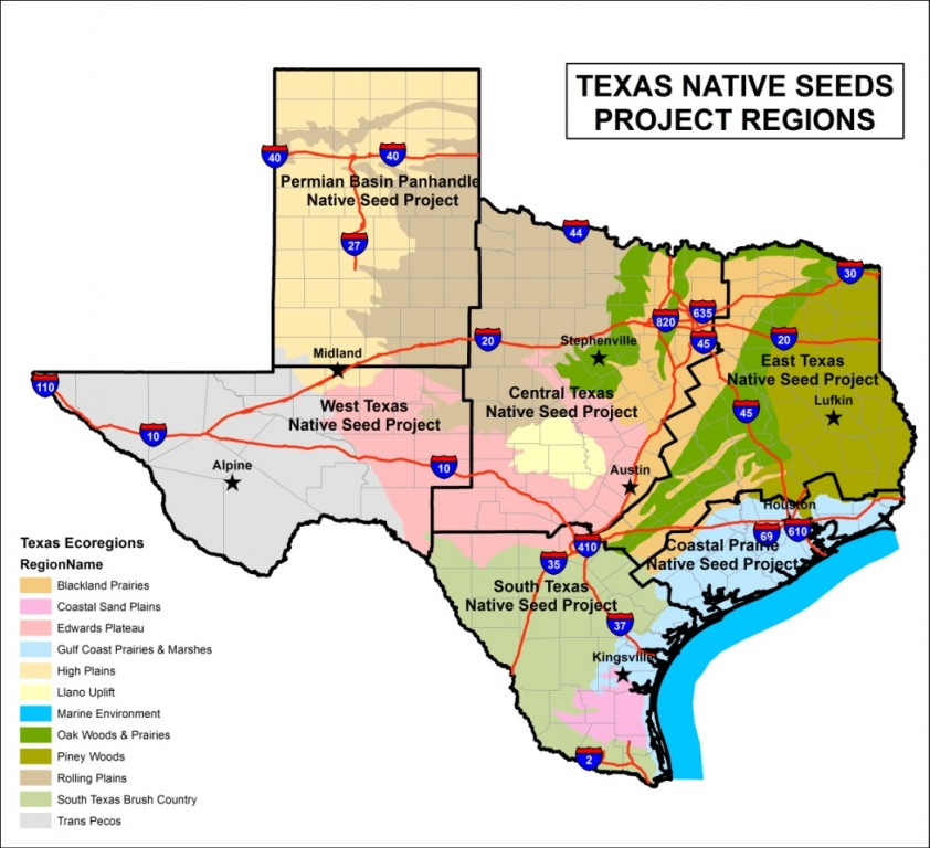 Texas Native Seeds Caesar Kleberg Wildlife Research Institute
